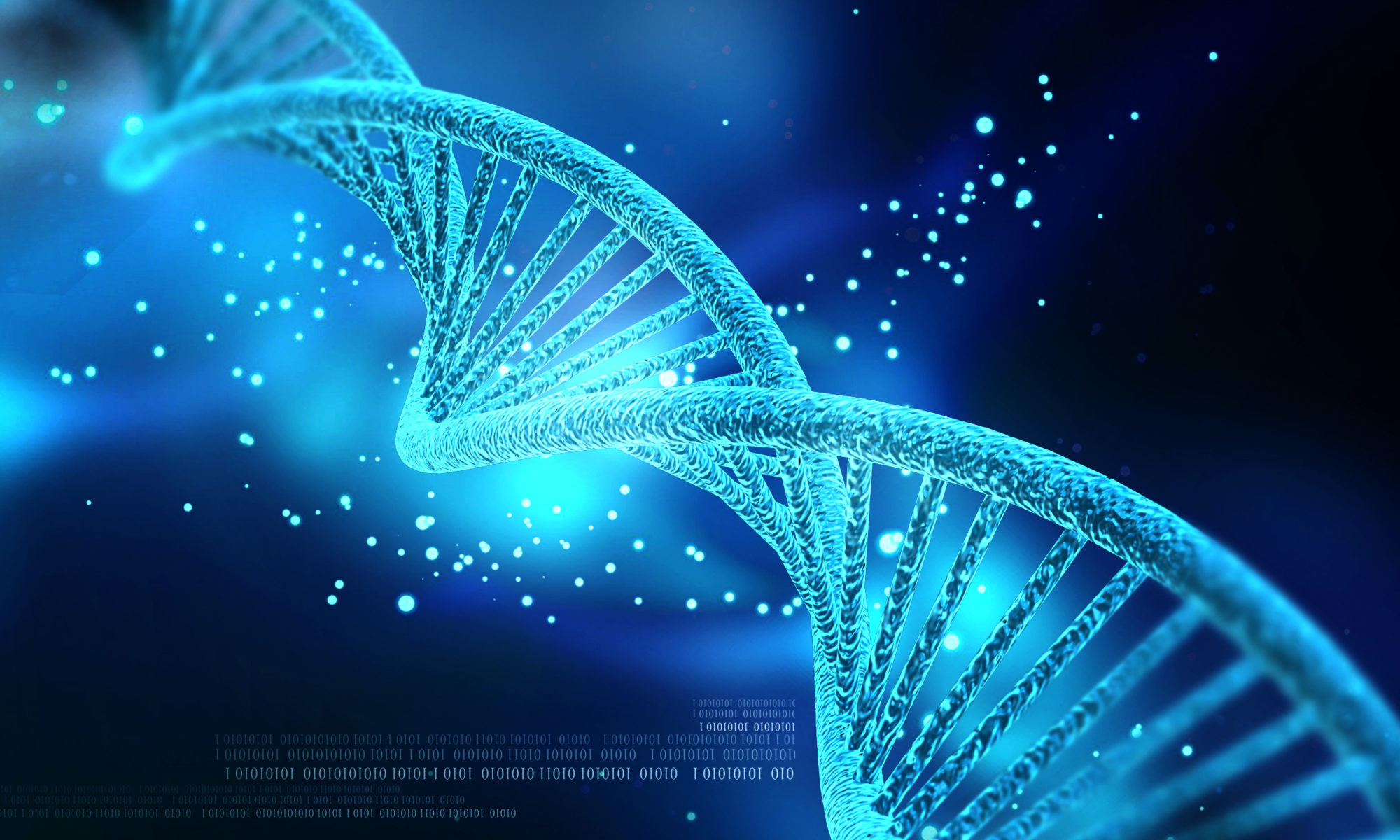 Re-connect with the core DNA