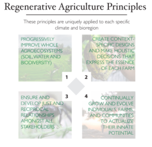 4 Principles of Regenerative Agriculture