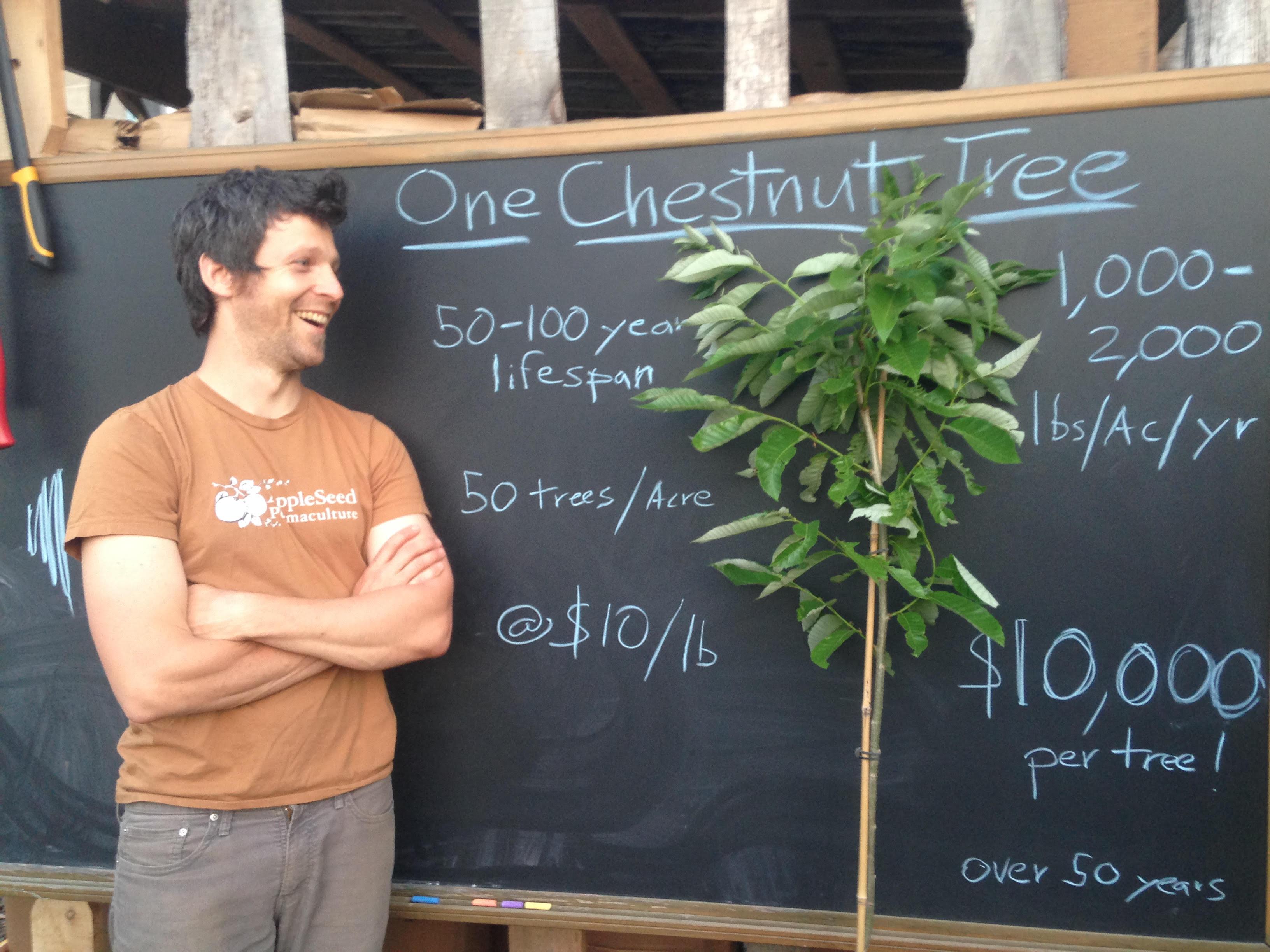 The $10,000 Tree