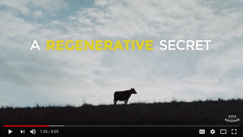 A Regenerative Secret - Kiss the Ground - Regeneration Newsroom