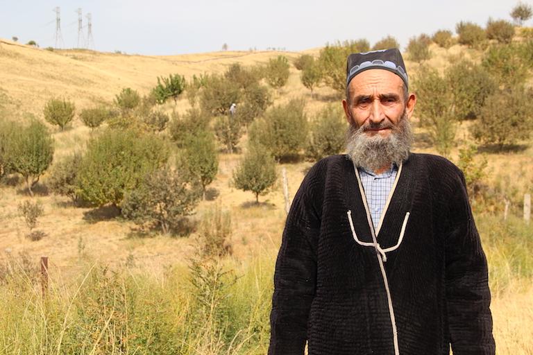 Tajikistan Agroforestry - Regeneration Newsroom